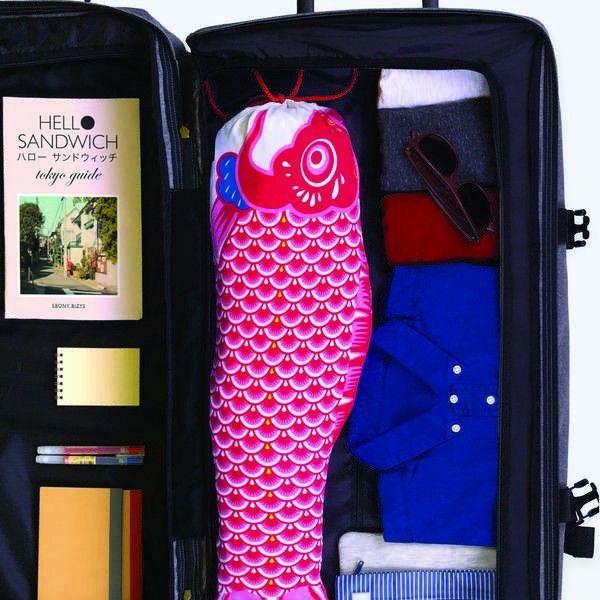 Doiy Koinobori Travel Waszak
