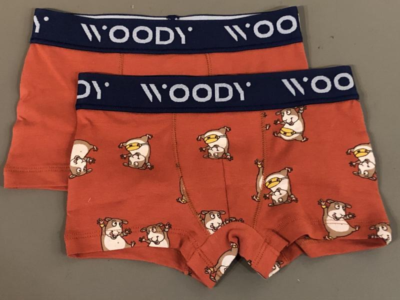 Woody Kleur Jongensboxershort DUOpack print cavia